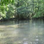 Garner Spring basin post dive